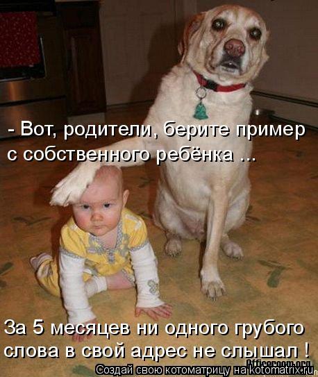 Котоматрица: - Вот, родители, берите пример с собственного ребёнка ... слова в свой адрес не слышал ! За 5 месяцев ни одного грубого