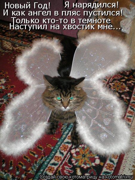Котоматрица: Новый Год! Я нарядился! И как ангел в пляс пустился! Только кто-то в темноте Наступил на хвостик мне...