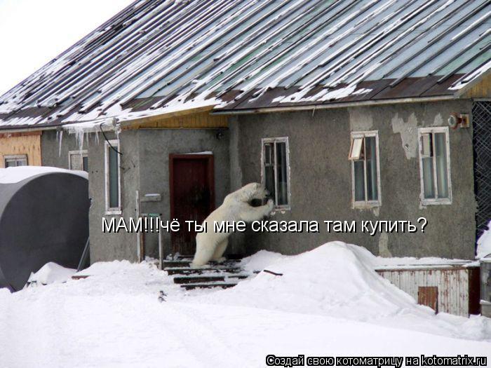 Котоматрица: МАМ!!!чё ты мне сказала там купить?
