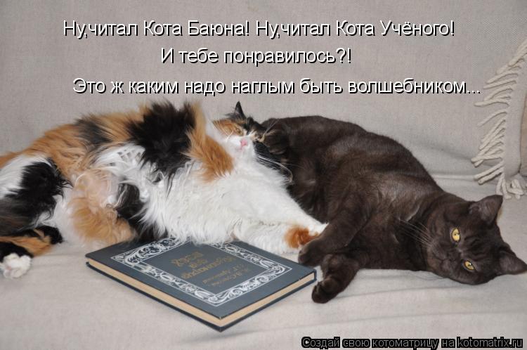 Котоматрица: Ну,читал Кота Баюна! Ну,читал Кота Учёного! Это ж каким надо наглым быть волшебником... И тебе понравилось?!