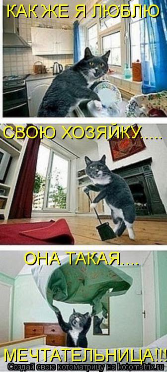Котоматрица - КАК ЖЕ Я ЛЮБЛЮ СВОЮ ХОЗЯЙКУ..... ОНА ТАКАЯ.... МЕЧТАТЕЛЬНИЦА!!!!