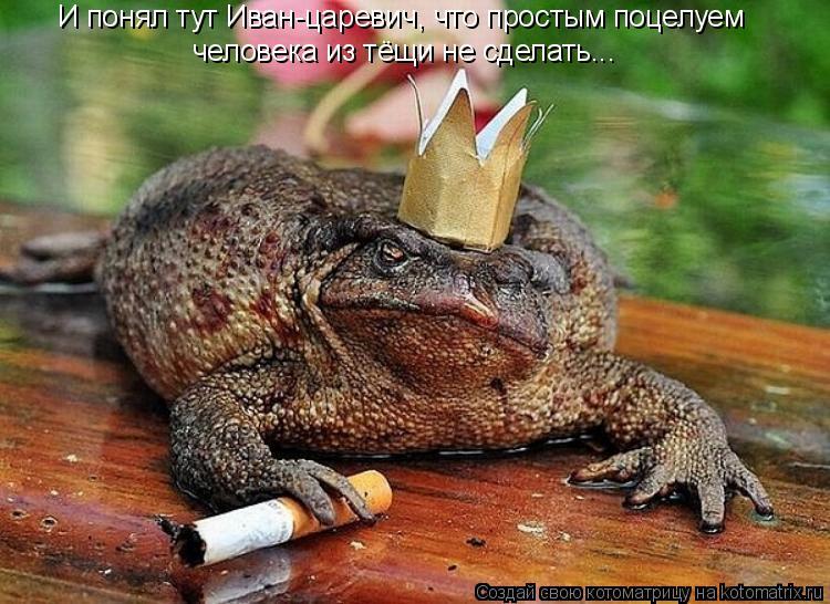 Котоматрица: И понял тут Иван-царевич, что простым поцелуем человека из тёщи не сделать...