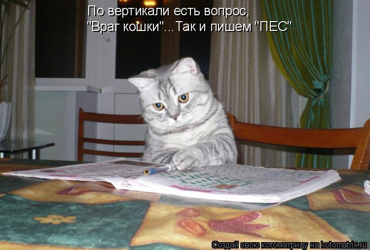 """Котоматрица: По вертикали есть вопрос, """"Враг кошки""""... Так и пишем """"ПЕС"""""""