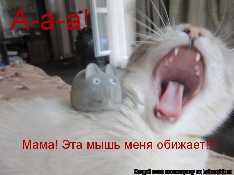 Котоматрица: А-а-а! Мама! Эта мышь меня обижает!!!
