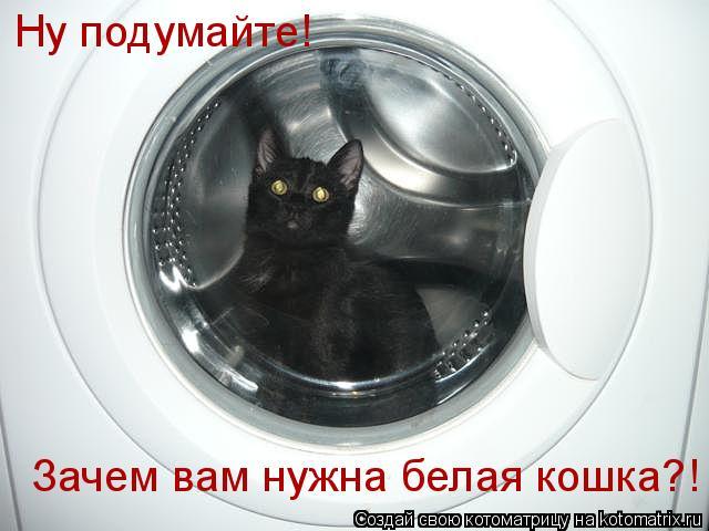 Котоматрица: Ну подумайте! Зачем вам нужна белая кошка?!
