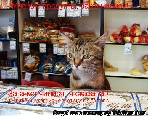 Котоматрица: - Мясные продукты, закончились!!! - За-а-кончилися, я сказала!!! В ближайшее время не предкидятся поставки....