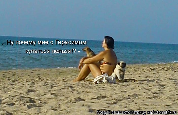 Котоматрица: ...Ну почему мне с Герасимом  купаться нельзя!? -