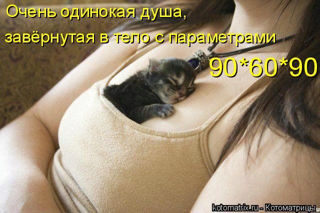 Котоматрица: завёрнутая в тело с параметрами  90*60*90 Очень одинокая душа,