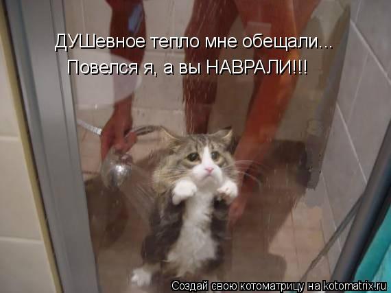 Котоматрица: ДУШевное тепло мне обещали... Повелся я, а вы НАВРАЛИ!!!