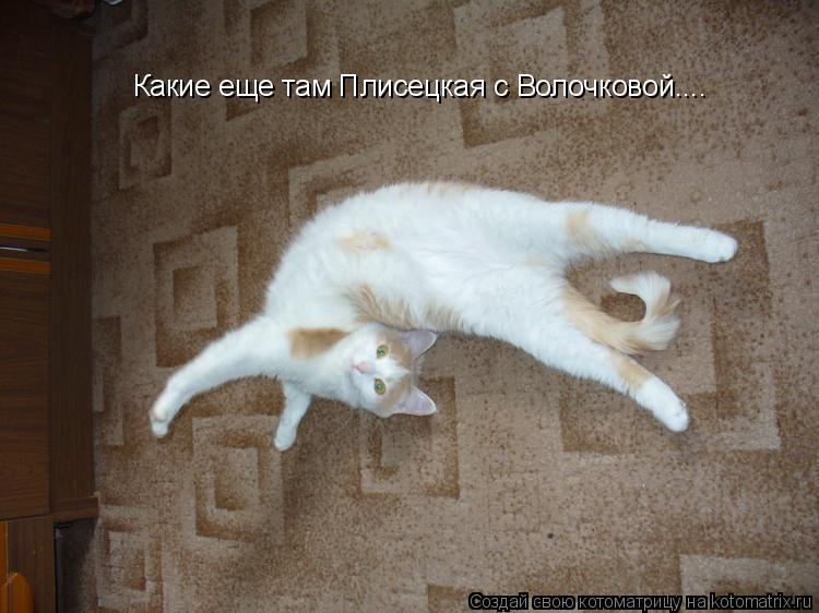 Котоматрица: Какие еще там Плисецкая с Волочковой....