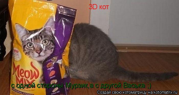 Котоматрица: 3D кот с одной стороны Мурзик,а с другой Васька ;)