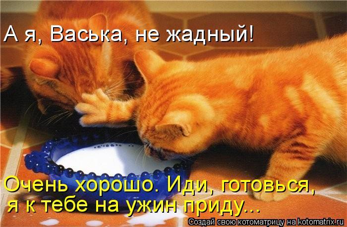 Котоматрица: А я, Васька, не жадный! Очень хорошо. Иди, готовься,  я к тебе на ужин приду...