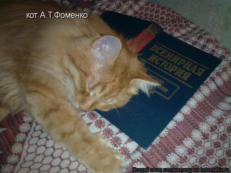 Котоматрица: кот А.Т.Фоменко
