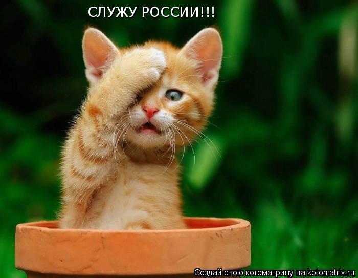 Котоматрица: СЛУЖУ РОССИИ!!!
