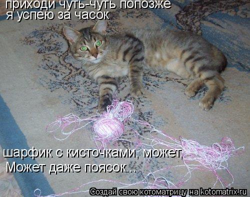 Котоматрица: приходи чуть-чуть попозже я успею за часок шарфик с кисточками, может, Может даже поясок...