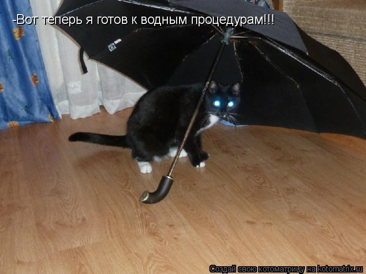 Котоматрица: -Вот теперь я готов к водным процедурам!!!