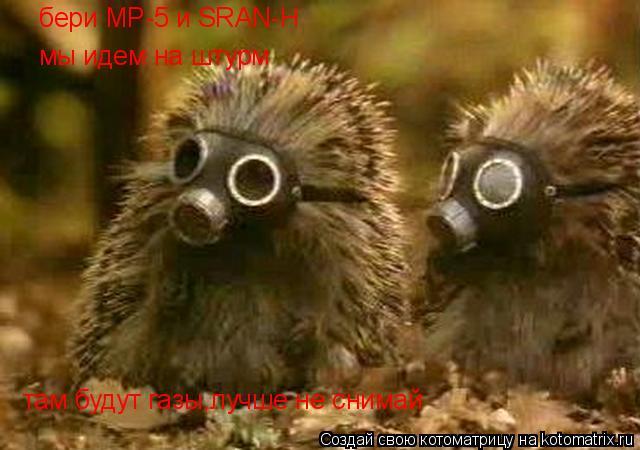 Котоматрица: бери MP-5 и SRAN-H мы идем на штурм там будут газы,лучше не снимай