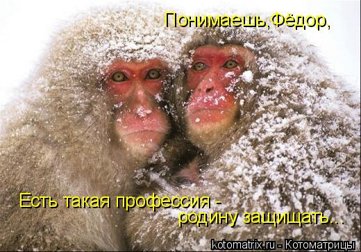 Котоматрица: Понимаешь,Фёдор, Есть такая профессия -  родину защищать...