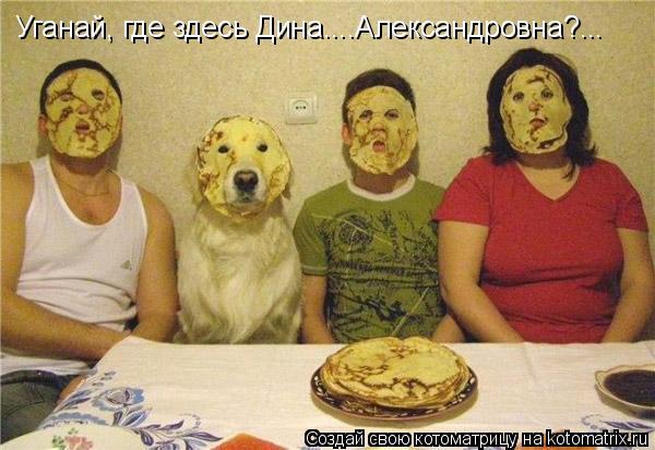 Котоматрица: Уганай, где здесь Дина....Александровна?...