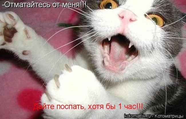 Котоматрица: -Отматайтесь от меня!!! Дайте поспать, хотя бы 1 час!!!