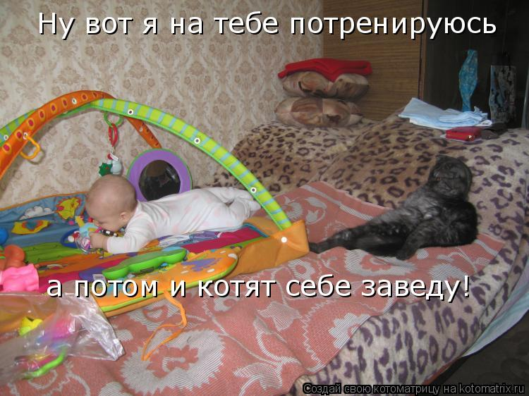 Котоматрица: Ну вот я на тебе потренируюсь а потом и котят себе заведу!