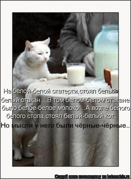 Котоматрица: На белой-белой скатерти,стоял белый- белый стакан....В том белом-белом стакане было белое-белое молоко....А возле белого- белого стола,стоял бе