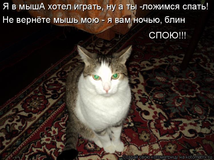 Котоматрица: Я в мышА хотел играть, ну а ты -ложимся спать! Не вернёте мышь мою - я вам ночью, блин СПОЮ!!!