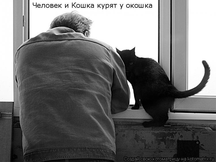 Котоматрица: Человек и Кошка курят у окошка
