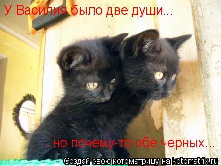Котоматрица: У Василия было две души... ...но почему-то обе черных...