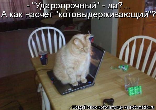 """Котоматрица: - """"Ударопрочный"""" - да?... А как насчет """"котовыдерживающий""""?"""