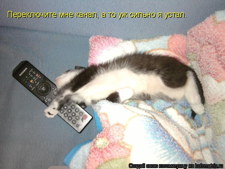 Котоматрица: Переключите мне канал, а то уж сильно я устал.