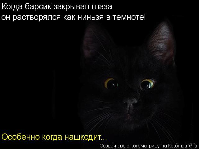 Котоматрица: Когда барсик закрывал глаза он растворялся как ниньзя в темноте! Особенно когда нашкодит...