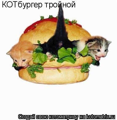 Котоматрица: КОТбургер тройной