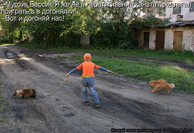 Котоматрица: --Мурзик,Барсик!Я же не в перетягивание каната предлагал поиграть,а в догонялки! --Вот и догоняй нас!
