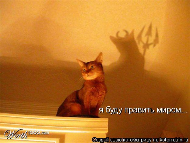 Котоматрица: я буду править миром...