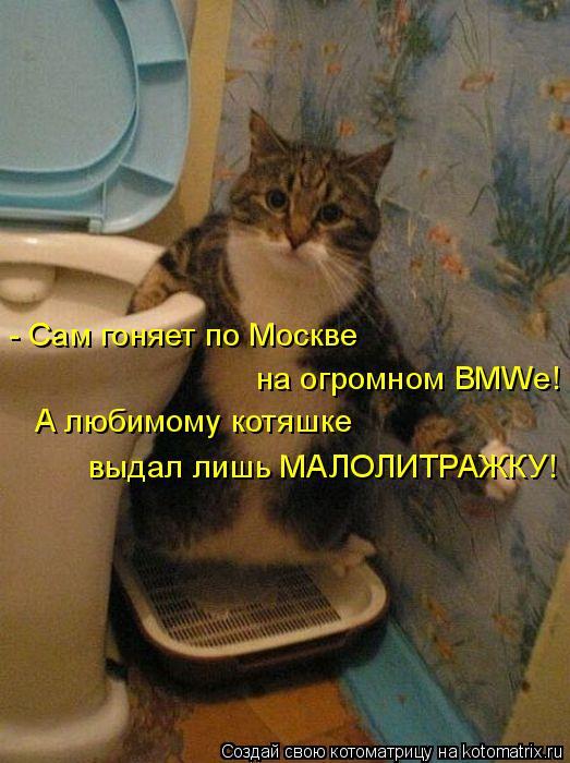 Котоматрица: - Сам гоняет по Москве  на огромном BMWе! А любимому котяшке выдал лишь МАЛОЛИТРАЖКУ!