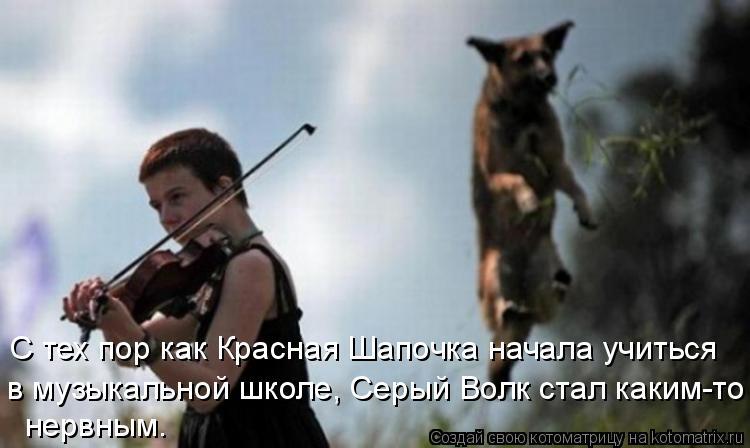 Котоматрица: С тех пор как Красная Шапочка начала учиться в музыкальной школе, Серый Волк стал каким-то нервным.