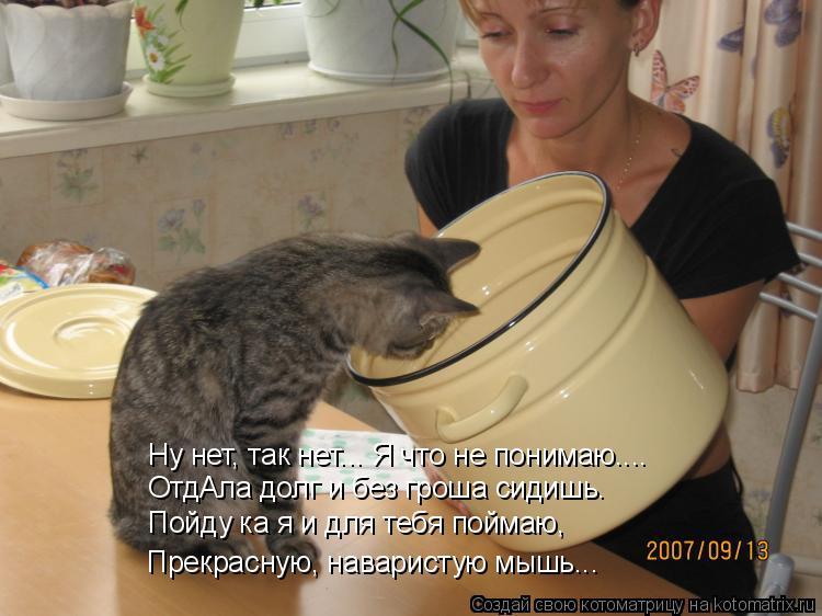 Котоматрица: Ну нет, так нет... Я что не понимаю.... ОтдАла долг и без гроша сидишь. Пойду ка я и для тебя поймаю,  Прекрасную, наваристую мышь...