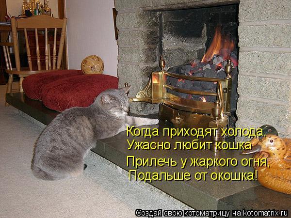 Котоматрица: Когда приходят холода, Ужасно любит кошка Прилечь у жаркого огня, Подальше от окошка!