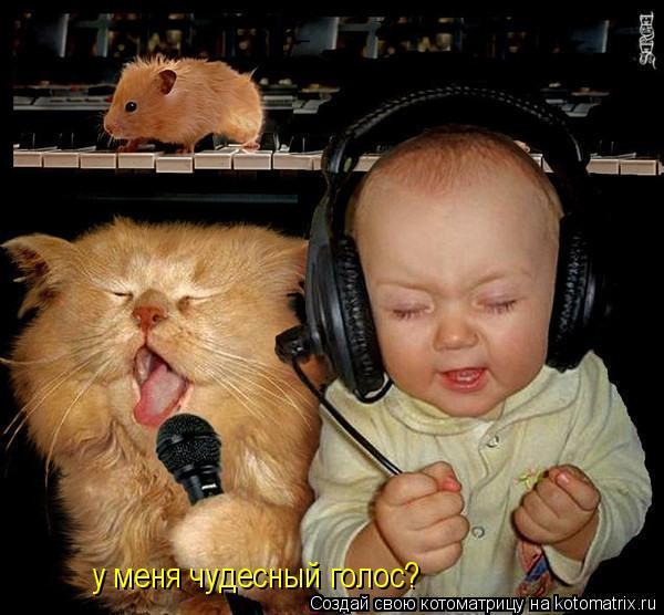 Котоматрица: у меня чудесный голос?