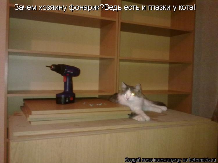 Котоматрица: Зачем хозяину фонарик?Ведь есть и глазки у кота!