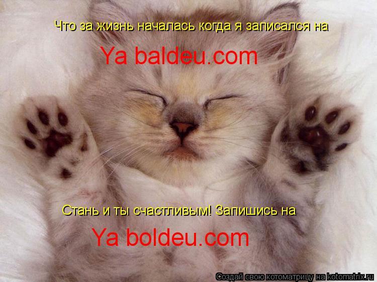 Котоматрица: Что за жизнь началась когда я записался на Ya baldeu.com Стань и ты счастливым! Запишись на Ya boldeu.com