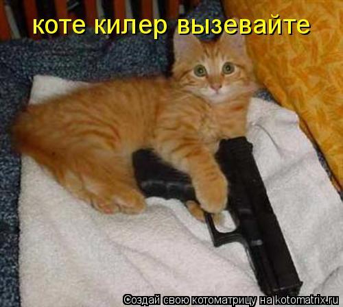 Котоматрица: коте килер вызевайте