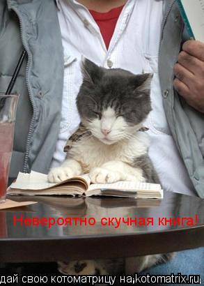 Котоматрица: Невероятно скучная книга!