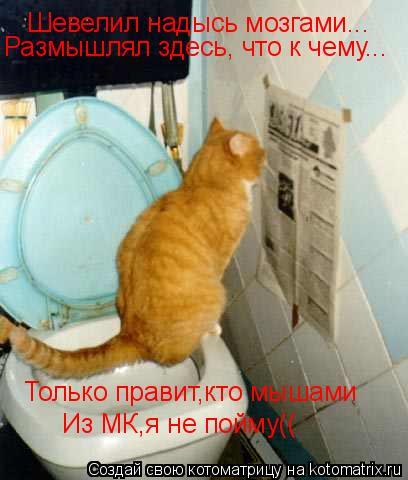Котоматрица: Шевелил надысь мозгами... Размышлял здесь, что к чему... Только правит,кто мышами Из МК,я не пойму((