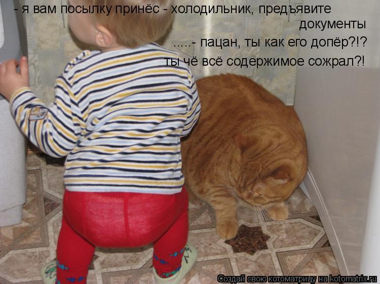 Котоматрица: - я вам посылку принёс - холодильник, предъявите документы .....- пацан, ты как его допёр?!? ты чё всё содержимое сожрал?!