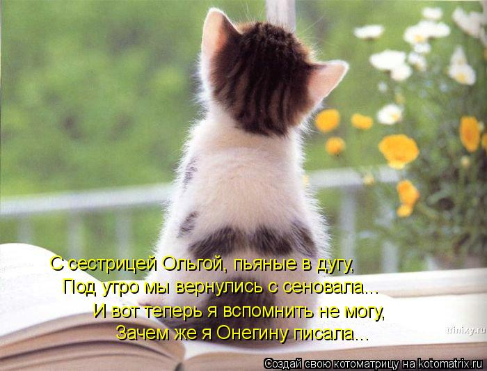 Котоматрица: С сестрицей Ольгой, пьяные в дугу, Под утро мы вернулись с сеновала... И вот теперь я вспомнить не могу, Зачем же я Онегину писала...