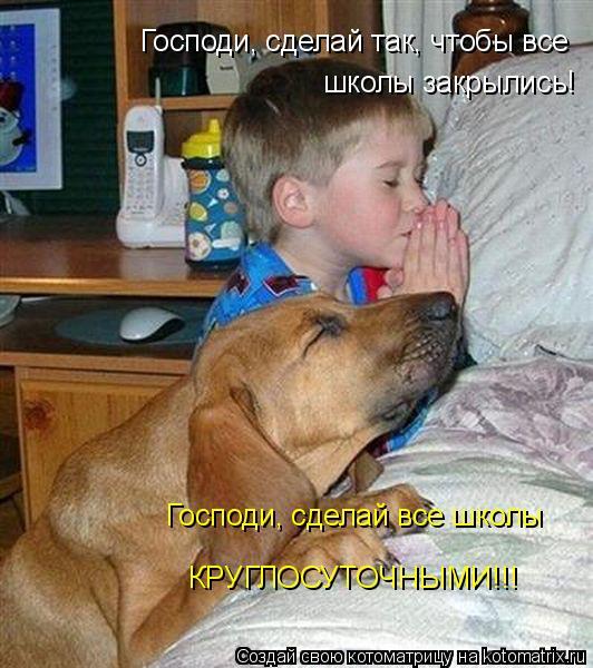 Котоматрица: Господи, сделай так, чтобы все школы закрылись! Господи, сделай все школы КРУГЛОСУТОЧНЫМИ!!!