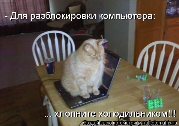 Котоматрица: - Для разблокировки компьютера: ... хлопните холодильником!!!