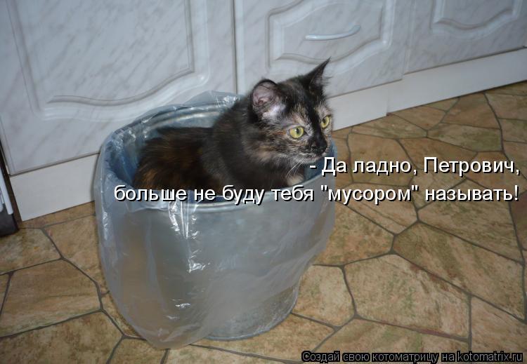 """Котоматрица: - Да ладно, Петрович, больше не буду тебя """"мусором"""" называть!"""